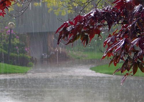 Дощі і Каховка: чи зникнуть бурхливі потоки з вулиць міста?
