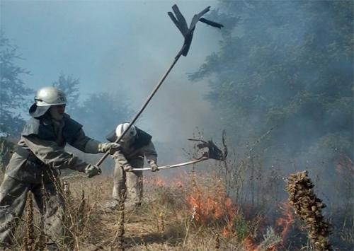 Вчора херсонські пожежники 32 рази виїжджали на гасіння сухостою і сміття