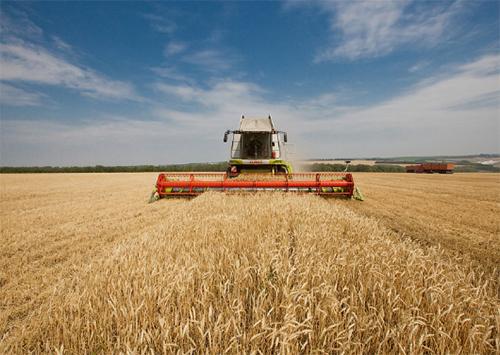 Формують фермерську самооборону
