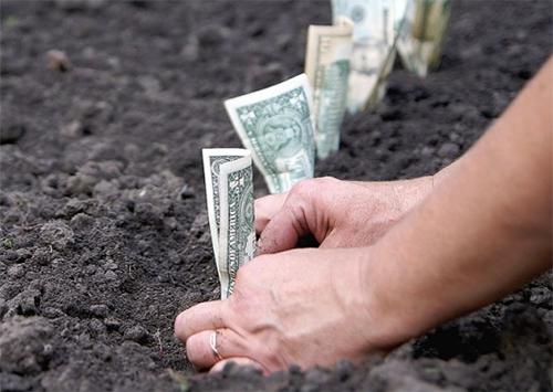 Земля: ціна, податки та пільги