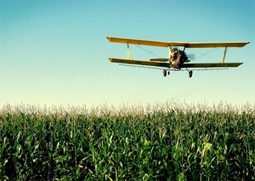 Де поділися «крилаті агрономи»?