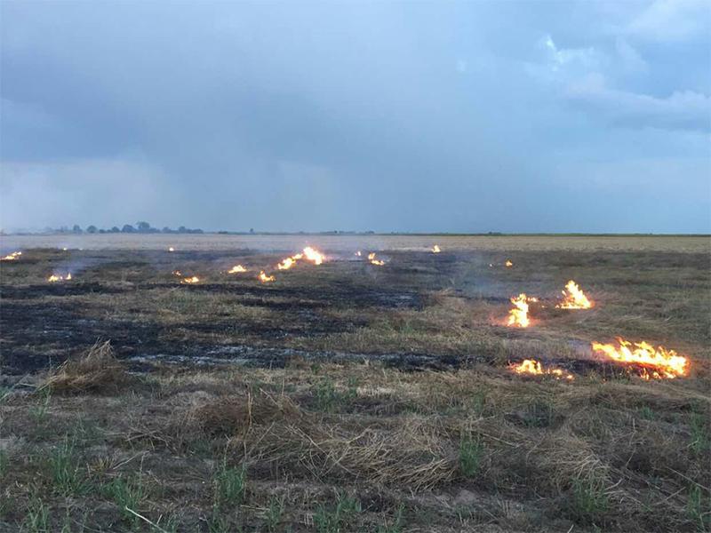 Жителів Херсонщини попереджають: спалювання стерні може призвести до пожежі
