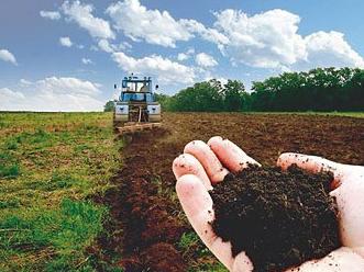 На Херсонщині виставляють на торги права на оренду земельних ділянок