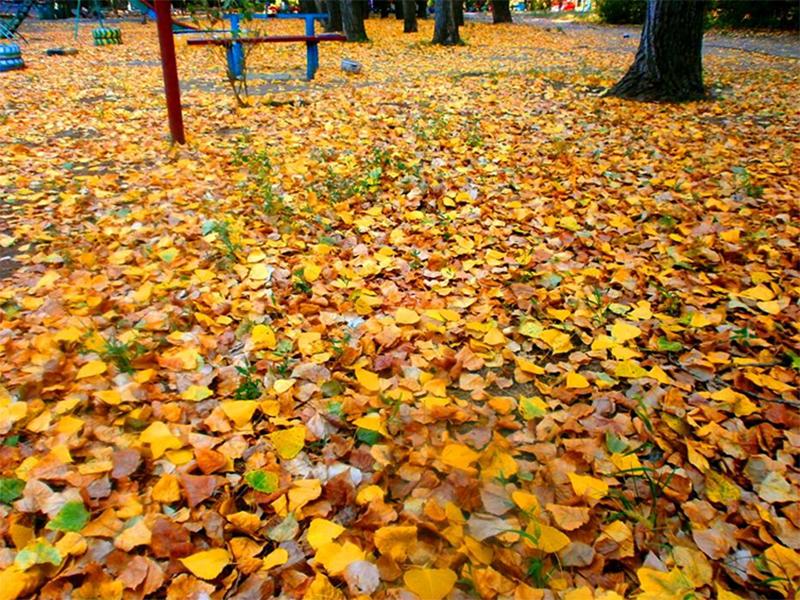 В Херсоне уже осень?