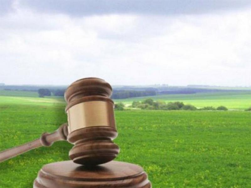 В Новой Каховке проведут земельные торги