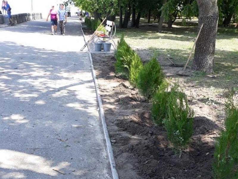 У Каховці зайнялися озелененням набережної
