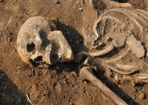 Житель Новой Каховки выкопал в собственном дворе человеческий скелет