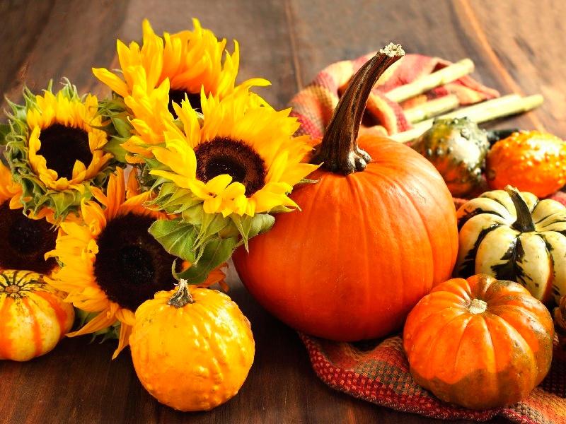 Названы самые полезные сезонные продукты