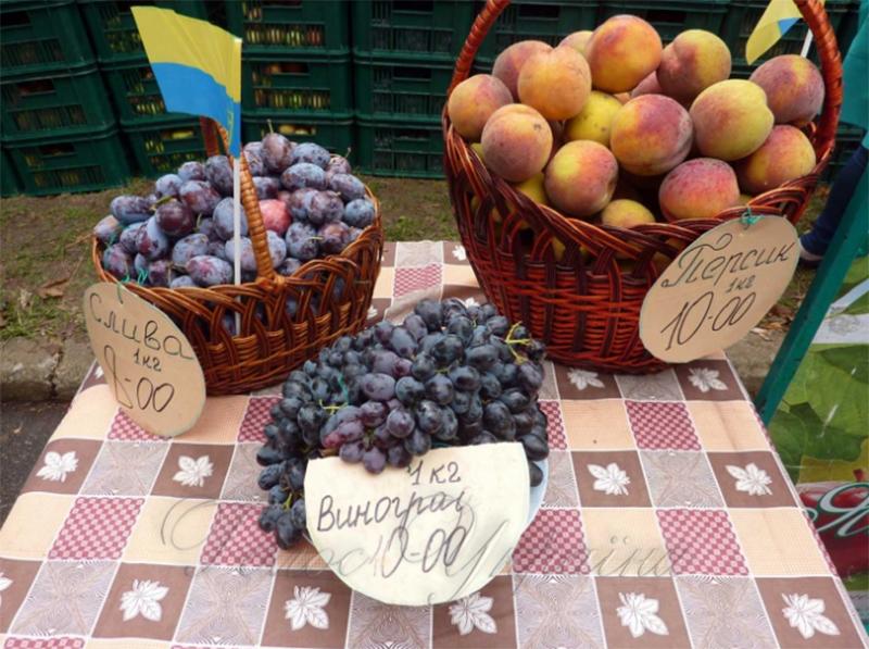 На Херсонщині фрукти віддають за копійки, та ніхто не купує