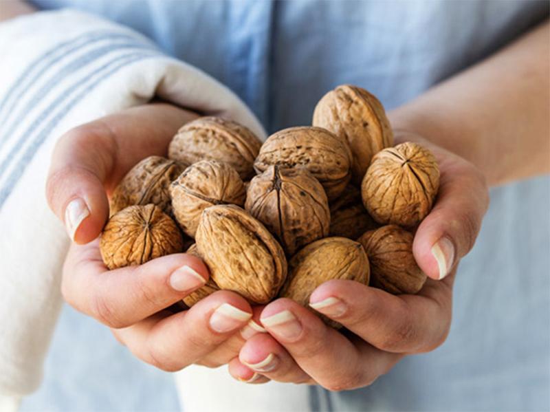 Скупщики орехов жульничают на Херсонщине