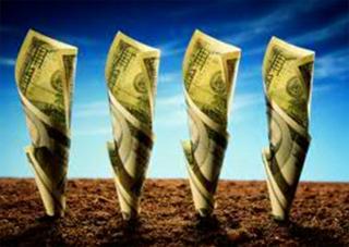 Платить за землю стали больше