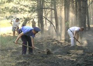 Брошенный в лесу окурок обойдется пастуху в 5 лет тюрьмы и 240 тыс грн