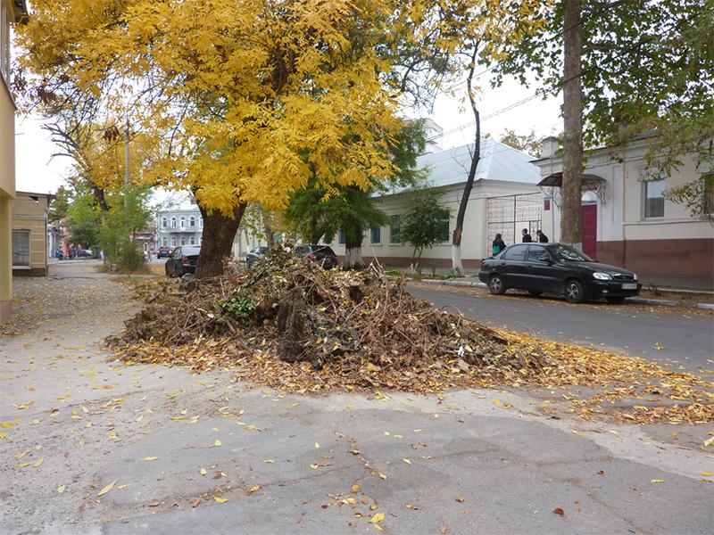 Центр Херсона утонул в палой листве