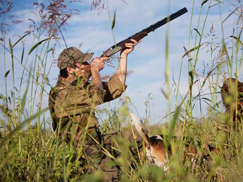 Фатальные выстрелы на Арабатской стрелке