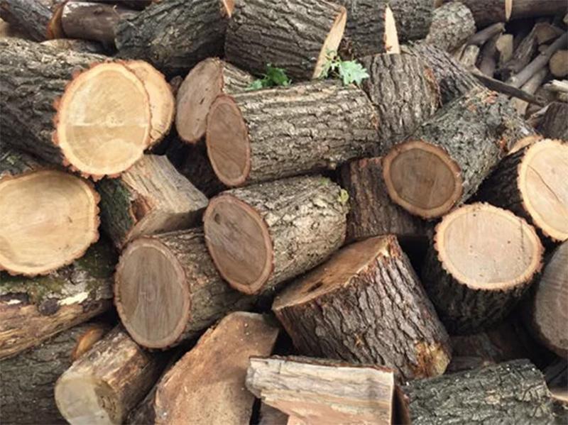 Стоит ли опасаться нехватки дров на Херсонщине