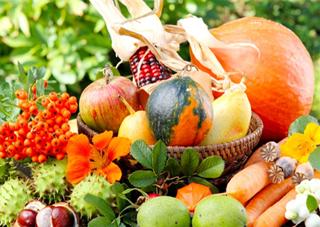 Какой урожай собрали на Херсонщине в этом году?