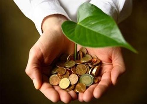 На відновлення природного середовища Херсонщини додано понад 2 мільйони