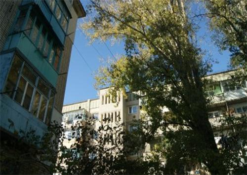 Жители Херсонщины обеспокоены аварийными деревьями