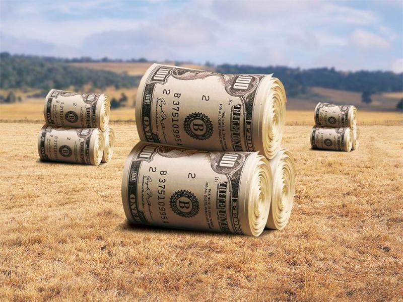 Торгувати землею все одно, що продавати Батьківщину