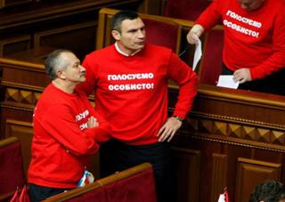«УДАР» хочет заблокировать работу всех Советов Украины