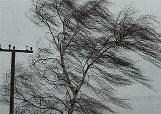 Ветер оставил без света 6 населенных пунктов Херсонщины