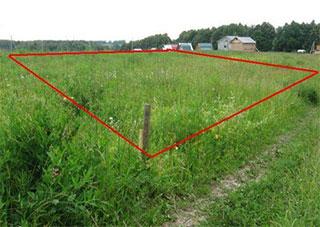 В Херсонской области почти все собственники земельных паев получили на руки государственные акты