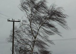 В Херсонской области объявлено штормовое предупреждение
