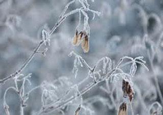 На выходных в Херсонской области ожидается небольшой мороз