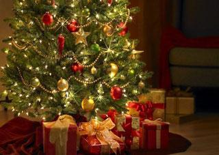 Украинцы отметили новогодние праздники сразу несколькими рекордами