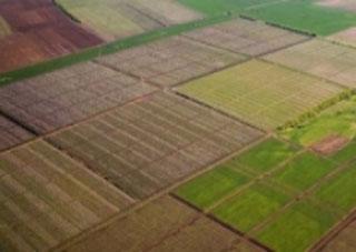 На Херсонщине продолжается работа по разграничению земель
