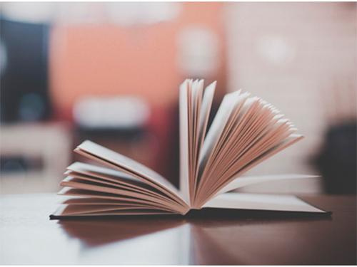 Куди приведе Херсонщину «реформа» освіти