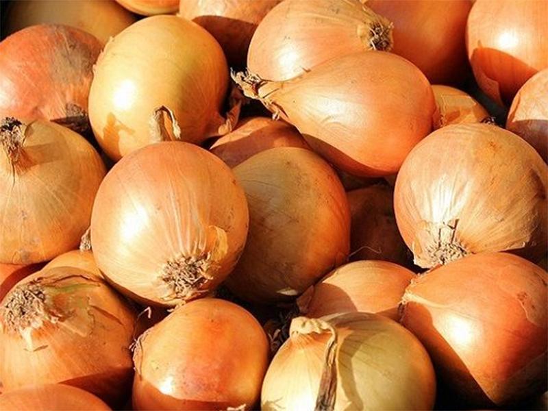 Начали дешеветь сверхдорогие овощи на Херсонщине