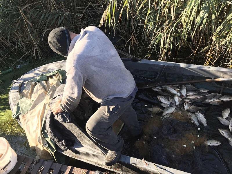 Власти поощряют браконьерство на Херсонщине
