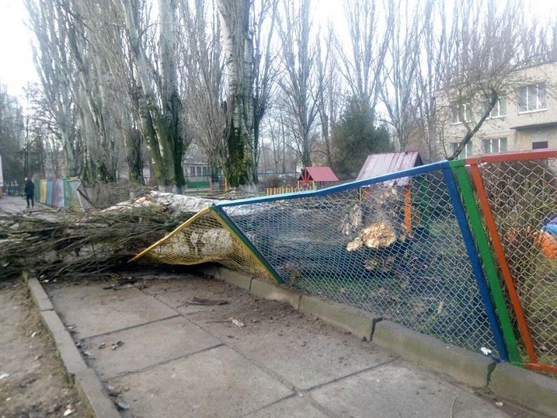 В Херсоне упало дерево та территории детсада