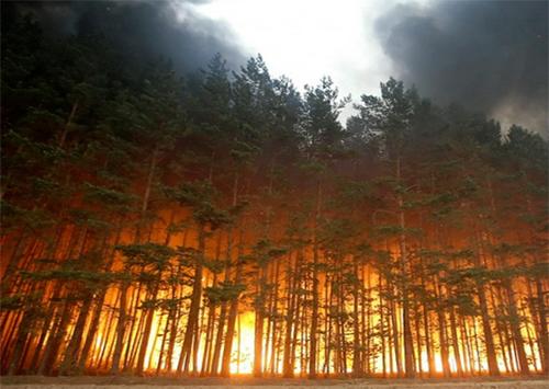 Херсонщина горить