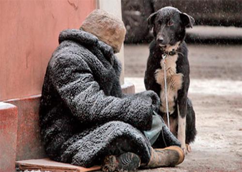 Десятки жизней забирают холода на Херсонщине