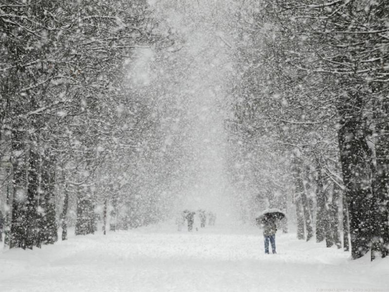 На Херсонщине снегопад — как стихийное бедствие