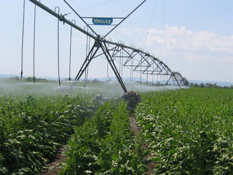 Сільгоспвиробники Олешшя відновлюють зрошення спільно з водгоспом