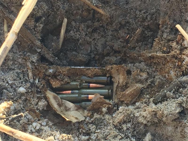 Співробітники СБУ виявили на Херсонщині схованку з боєприпасами
