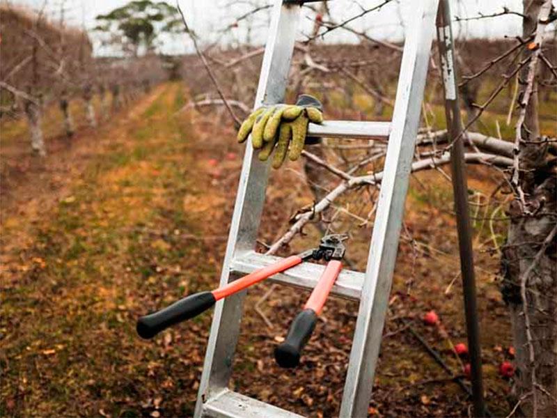 Среди херсонских садоводов прошла волна несчастных случаев