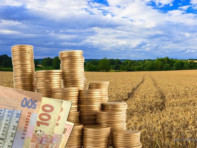 Чи хочуть селяни на Херсонщині продавати свою землю?