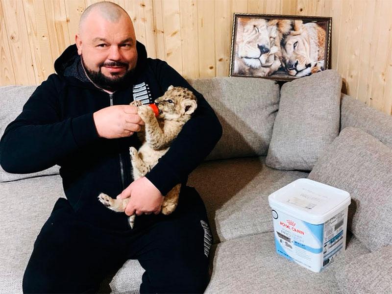 На Херсонщине лев поселился в офисе директора зоопарка