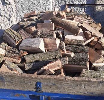 Скадовські поліцейські викрили лісового браконьєра