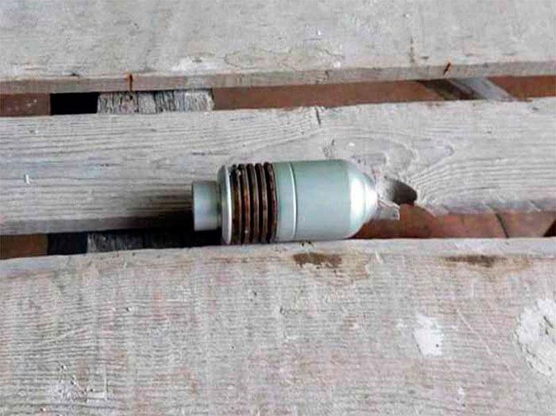 На Херсонщине «металлист» хранил боеприпасы в спальне