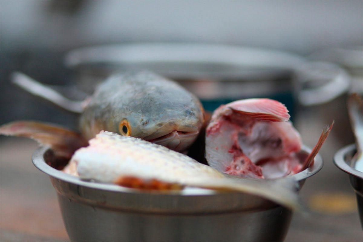 Рыбные истории Геническа