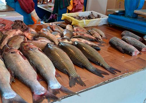 Днепровская рыба в Херсоне стала дороже импортной