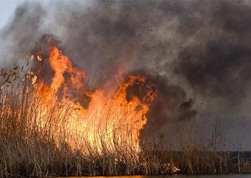 Страшна пожежа налякала весь Херсон