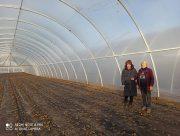 Фермери з Херсонщини планують зібрати перший урожай суниці вже в квітні