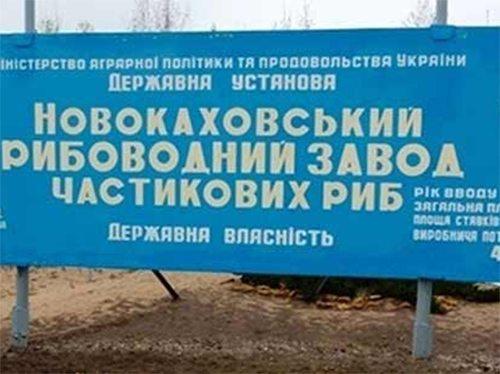 Народний депутат Колихаєв захистив інтереси виборців: Новокаховський рибзавод врятовано