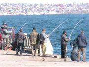 Де у Херсоні ловиться риба
